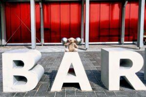 OGGI-Beton: Betonbuchstaben für die Kita Bärenhöhle in Esens